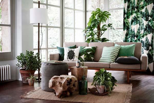Divano con cuscini stile jungle e varie piante come complemento d'arredo