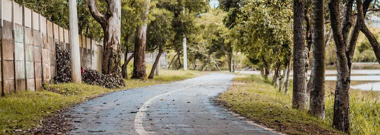 Vista di una strada alberata in perfetta regola con le normative urbanistiche