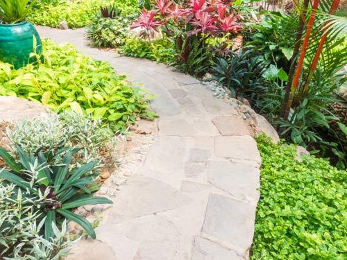 vialetto di un giardino adornatto da piante e fiori colorati