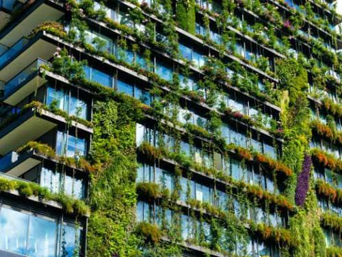 Architettura bioclimatica, le forme